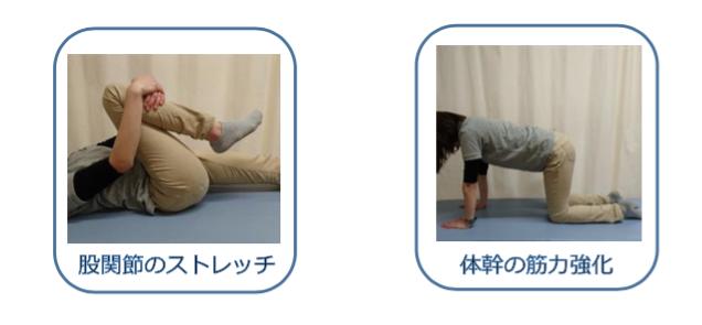 腰部椎間板ヘルニア 股関節のストレッチ 体幹の筋力強化