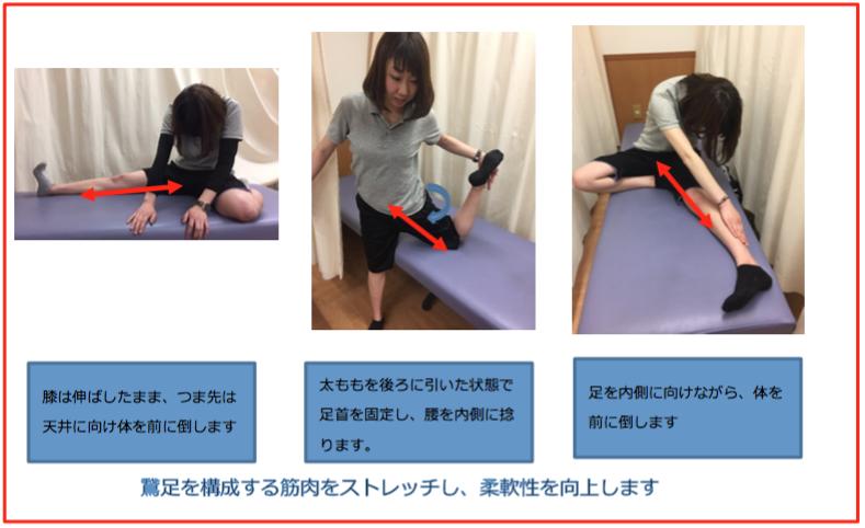 鵞足炎 運動療法