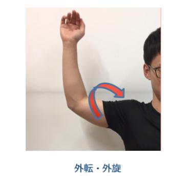 >反復性肩関節脱臼の原因